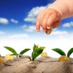 Klimafreundliche Investitionen – Gute Rendite für Anleger und Umwelt?
